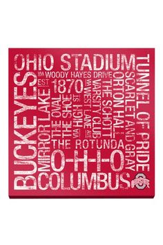 """Ohio State College Colors Subway Art - 24"""" x 24"""" by Sports Collection on @HauteLook"""