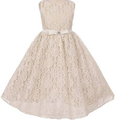 Little Girls Lace Overlay Organza Vintage Flair Flowers Girls Dresses Champagne 6 K63K84C * Want additional info? Click on the image.