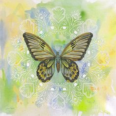 Butterfly Beauties-jp2358 Painting