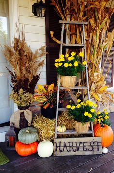To have a fall outdoor decor to remember, we have gathered 13 DIY fall porch decor ideas that will beautify your front door for the upcoming holiday season. Autumn Decorating, Porch Decorating, Decorating Ideas, Fall Outdoor Decorating, Autumn Home, Diy Autumn, Fall Crafts, Fall Halloween, Halloween Porch