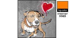 Für Männer - American Pit Bull Terrier No.3 – Streetart Style - ein Designerstück von bg-color bei DaWanda