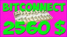 bitconnect битконект криптовалюта Куда инвестировать вкладывать деньги и...