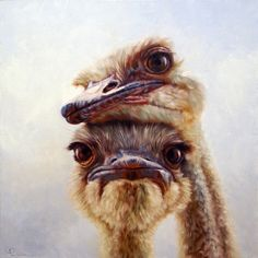 """Lucia Heffernan """"Soulmates"""" I am the one who is laying their head on the other one. Animals And Pets, Funny Animals, Cute Animals, Animal Paintings, Animal Drawings, Beautiful Birds, Animals Beautiful, Camelus, Foto Portrait"""