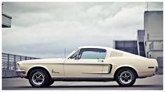 Mustang : LAURENT NIVALLE PHOTOGRAPHY 2011