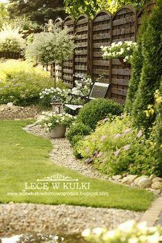 W moim ogrodzie bardzo mało kwitnących bylin...   Dlatego cieszy mnie każdy nowy kwiatek na rabacie...teraz to czas jaśminowca   Kwitn...