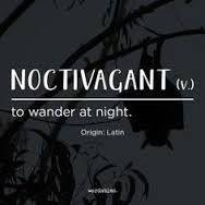 Word of the day #noctivagant #wordoftheday #definedatfive