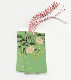 $8 Emeral Peony Gift Tags, Set of 10