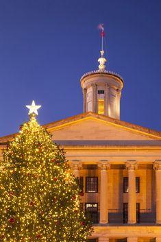 2c9038db647 See If You Live Near The Best Christmas Tree in Your State