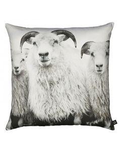 Pute Sheep 60x60 cm - Mitt Hjem