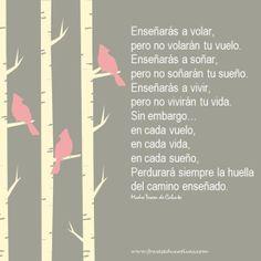 Poema Enseñarás a volar de María Teresa de Calcuta