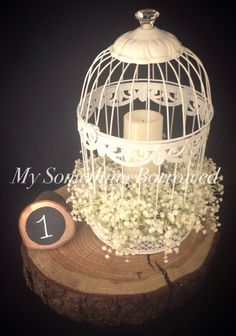 Vintage birdcage with gypsophila on a tree slice  www.facebook.com/mysomethingborrowedhire www.mysomethingborrowed.co.uk