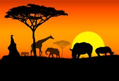 Travel to the exotic African continent. Africa has a reputation of being magical, mysterious and a place for wild adventures. From its huge national parks to the ancient pyramids, this continent holds many secrets and beauty beyond compare. Come discover the unique African cities, architectural structures and natural views