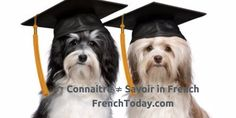 Connaitre ≠ Savoir in French