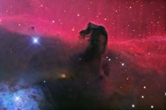 2008 Horsehead Nebula, I love using Astronomy Picture of the Day aka apod as a source for my computer desktop. Nature is Beautiful!