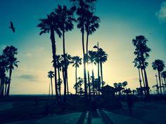 Sunset @ Venice Beach, Los Angeles, California