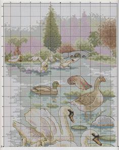 swan parkland waters 2/4