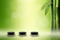 Se estivermos dispostos a observar a natureza, podemos aprender a ser mais flexíveis e a superar obstáculos. Texto de Paulo R. Käfer - Blog da MKaPlus.