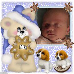 Cute Teddy Gingerbread