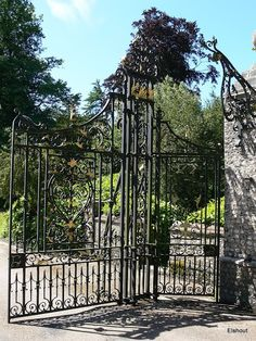 West Dean Gardens - Flip - Picasa Webalbums