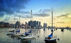 Talk about a view! Sailboats on San Diego Bay and the city skyline. #SanDiego