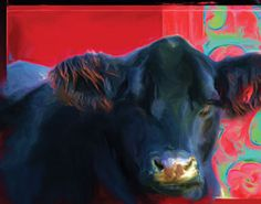 Neil Cattle Co. Oil Paintings.. WAY COOL