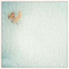 ponhouse:  #sand#grass#iPhone#2012 (Taken with instagram)