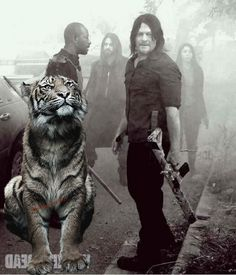 😆Ok you got me with the 🐯 time to watch The Walking Dead. Walking Dead Season 8, Walking Dead Tv Series, Fear The Walking Dead, King Ezekiel, Walking Dead Pictures, Tom Payne, Talking To The Dead, Stuff And Thangs, Daryl Dixon