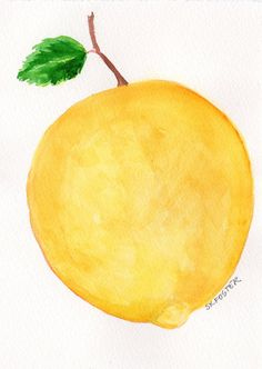 Original Lemon Watercolor Painting Fruit Series by SharonFosterArt, $15.00