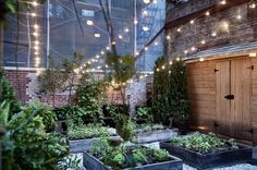Downtown NYC greenhouse? This restaurant grows most of the food that it serves in house, from this very garden.. You can also have intimate gatherings in the space.