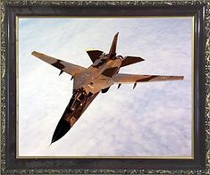 Aviation Framed Poster - Military FB-111 Aardvark Bomber ... https://www.amazon.com/dp/B01NAL47J2/ref=cm_sw_r_pi_dp_U_x_x4WyAbT91E63F