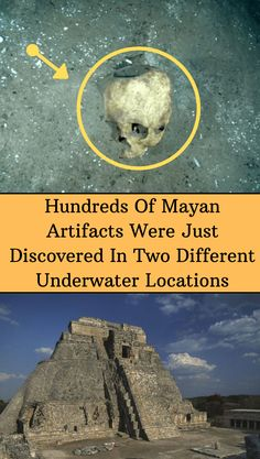 Some of the artifacts include an obsidian dagger and a severed head that was used as an incense holder. Fun Facts Scary, Bizarre Facts, Weird Facts, Mayan Cities, Animal Bones, Incense Holder, Weird Pictures, Mind Blown, Beautiful Landscapes