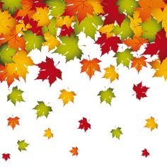 Transparent Fall Leaves Decoration PNG Image