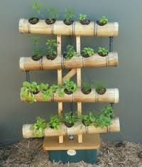 Image result for nft bamboo hydroponics