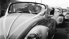 #kombi #weddings #kombi #hire #combi #wedding #sydney #sydneyweddincars #cars #kombihirecars  #komibwedding #samba #sambaweddings #sambakombi #beetleweddings #beetles #convertibles #buggy #convertiblewedding #beetlehire #beetleweddinghire #vintage #mustangs #mustangweddings #charger #dodge #chargerhirecars #chargerweddings #chargerhirecars view cars at Unit2a 12 Romford Road, Kings Park (off Sunnyholt Road Kings Park/Blacktown)