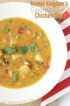 Animal Kingdom's Coconut Curry Chicken Soup | This amazing soup recipe is one your entire family will love!