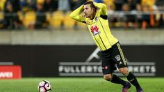 Wellington Phoenix agree to terminate Kosta Barbarouses' contract Victorious, Phoenix, Melbourne, Sports, Hs Sports, Excercise, Sport, Exercise