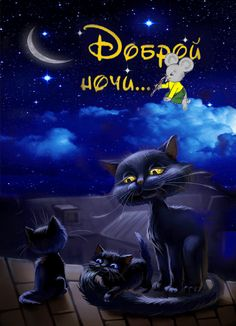 Cute Good Night, Good Night Gif, Night Time, Gifs, Just Magic, Gif Photo, Angel And Devil, Nighty Night, Beautiful Moon