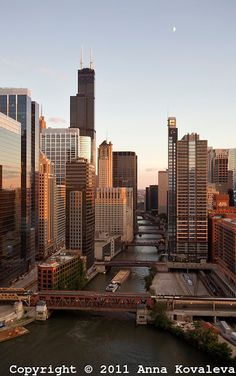 Elevated view of the cityscape of Chicago   Professional high res images of cities