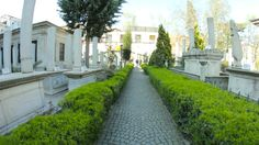 Stock Footage - Cemetery Walk through Graves and Tombs POV | VideoHive