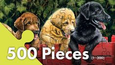 Jigsaw Junction offers hundreds of games & puzzles ranging from easy to insanely challenging. Puzzle Shop, Jpg, Scooby Doo, Puzzles, All Things, Fictional Characters, Animals, Games, Easy