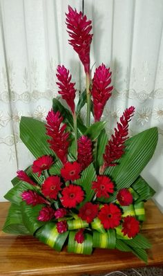 أنا متأكد أن عطر أنوثتها لا يقاوم Tropical Floral Arrangements, Large Flower Arrangements, Ikebana Flower Arrangement, Flower Centerpieces, Flower Decorations, Beautiful Rose Flowers, Exotic Flowers, Tropical Flowers, Fresh Flowers