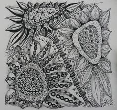 Xplore & Xpress: Zentangle Weekly Challenge # 43 : Sunflowers and Fibonacci series. many wonderful Zentangle on her blog.  Worth the visit to http://xploreandxpress.blogspot.com/