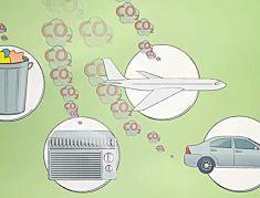 Aprenda a Reduzir e Compensar CO2