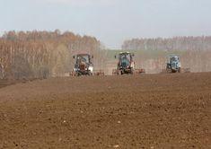 В Коломенском городском округе продолжаются весенние полевые работы