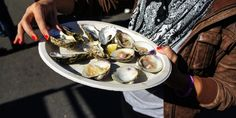 Oyster and clams - Oyster Fest Wellfleet