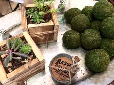 Succulents in our precious Planter Boxes by Wooden Sugar, Mason Jar galvanized coasters, and lovely decorative moss balls...all atop our tinworks platters!