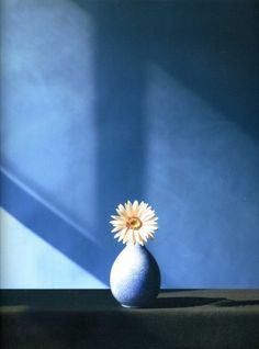 Robert Mapplethorpe The complete flowers