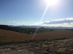 新栄の丘、美瑛、北海道