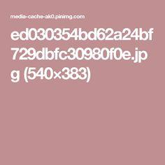 ed030354bd62a24bf729dbfc30980f0e.jpg (540×383)
