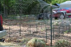 DIY Cattle Panel Arch Trellis for growing vines. May have to try this- probably already have the materials.